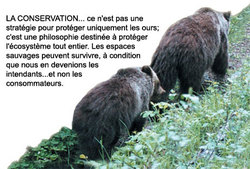 Conservation_ours